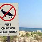 No Pets Art Print