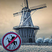 No Tilting At Windmills Art Print