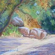 No Water At Cienega Creek Art Print