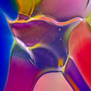 Noble Colors Art Print