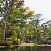 Norfolk Botanical Garden 6 Art Print