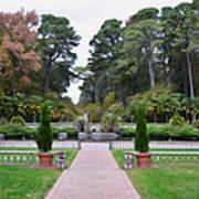 Norfolk Botanical Gardens 5 Art Print