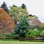 Norfolk Botanical Gardens Canal 9 Art Print
