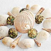 North Carolina Circle Of Sea Shells Art Print