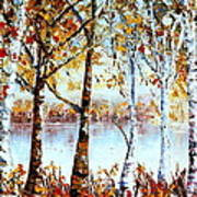 North Country Lake Superior Birch Trees Early Autumn Art Print