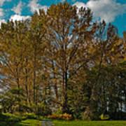 North Lions Park In Mount Vernon Washington Art Print