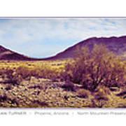 North Mountain Preserve Art Print