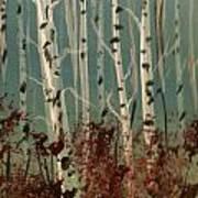Northern Birch Art Print