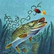 Northern Pike Spinner Bait Art Print
