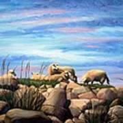 Norwegian Sheep Art Print by Janet King