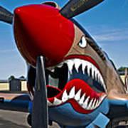 Nose Art On A Curtiss P-40e Warhawk Art Print