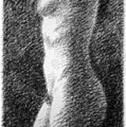 Nude Female Torso Drawings 6 Art Print
