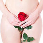 Nude With Red Rose Art Print