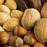 Nuts On Burlap Art Print
