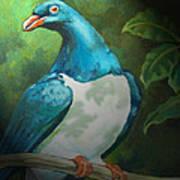 Nz Native Pigeon Kereru Art Print by Patricia Howitt