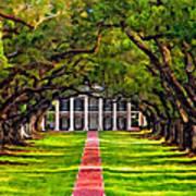 Oak Alley Paint Version Art Print by Steve Harrington
