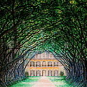 Oak Alley Plantation Art Print