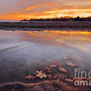 Oak Leaf And Beach Sunset Art Print