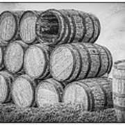 Oak Wine Barrels Black And White Art Print