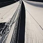 Obsession Sails 2 Black And White Art Print