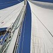 Obsession Sails 2 Art Print