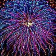 Ocean City Fireworks Art Print by Lisa Merman Bender