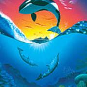 Ocean Freedom Art Print