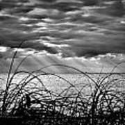 Ocean Rays Black And White Art Print