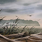 Ocean Shore Art Print by James Williamson