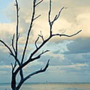 Ocean Tree Art Print