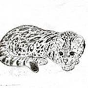 Ocelot Kitten Art Print