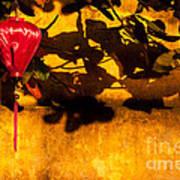 Ochre Wall Silk Lantern 02 Art Print