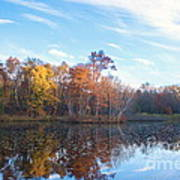 October Pond View Art Print