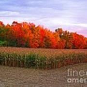 October Sunset On The Autumn Woods Art Print