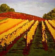 October Vineyard Art Print