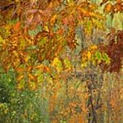 October Watercolors_2 Art Print