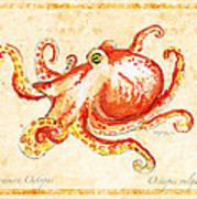 Octopus For Study Art Print