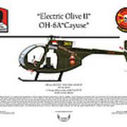 Oh-6a Electric Olive II Loach Art Print