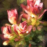Ohia Leaves Art Print