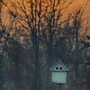 Ohio Bird House At Sunset Art Print