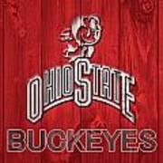 Ohio State Buckeyes Barn Door Art Print