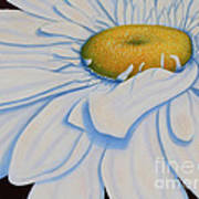 Oil Painting - Daisy Art Print