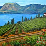Okanagan Vineyard Art Print