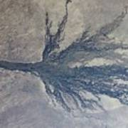 Okavango Art Print