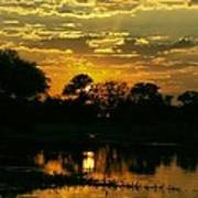 Okavango Sunset Art Print