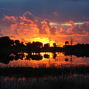 Okeeheelee Sunrise Art Print by Karen Lindquist