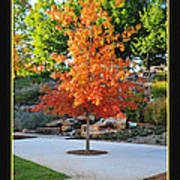 Oklahoma Fall Art Print