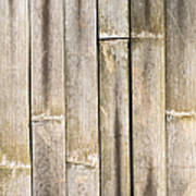 Old Bamboo Fence Art Print