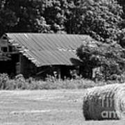 Barn In Kentucky No 84 Art Print