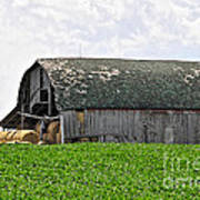 Old Barn And Round Bales Art Print